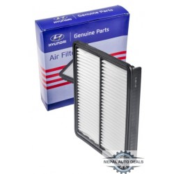 281132P100-Filter-Air...